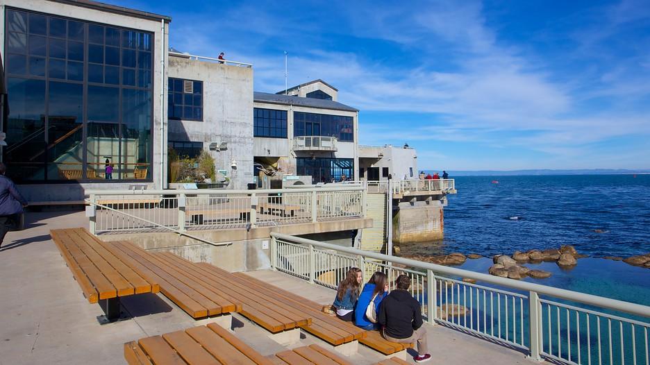 Monterey Hotels Monterey Bay California Vacations Tattoo