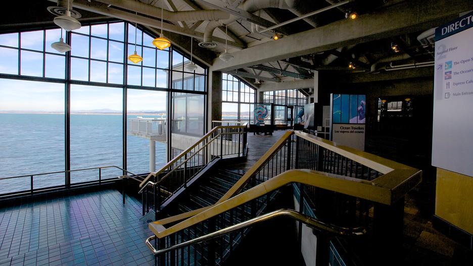 Monterey Bay Aquarium Monterey