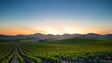 Napa - California - Tourism Media
