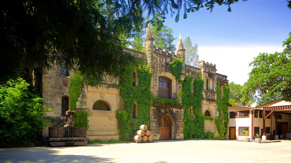 California Wine Travel Packages