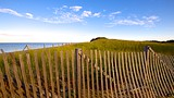 Herring Cove Beach - Cape Cod - Tourism Media