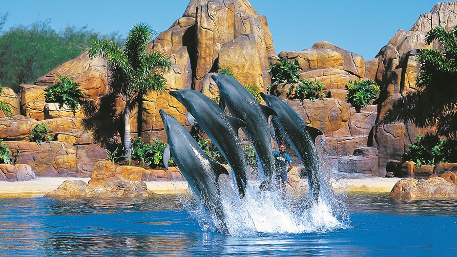 Gold Coast Holiday Packages 2017 Book Gold Coast Holidays