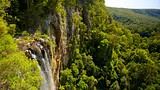 Showing item 44 of 64. Springbrook National Park - Gold Coast - Tourism Media