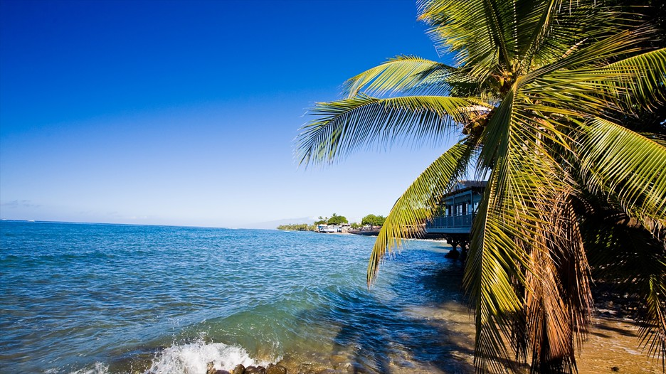 Maui Island Vacation Packages - Book Maui Island Trips ...