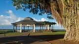 Showing item 62 of 65. Hilo - Hawaii Island - Tourism Media