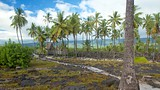 Showing item 31 of 65. Pu'uhonua o Honaunau National Historical Park - Hawaii Island - Tourism Media