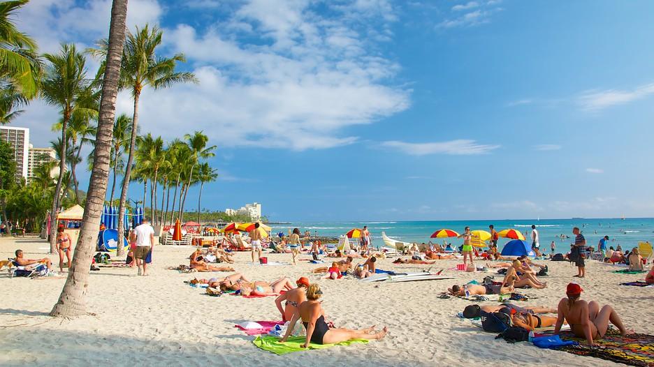 Oahu Holidays Book Cheap Holidays To Oahu And Oahu City