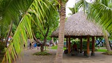 Papeete - Tahiti - Tourism Media