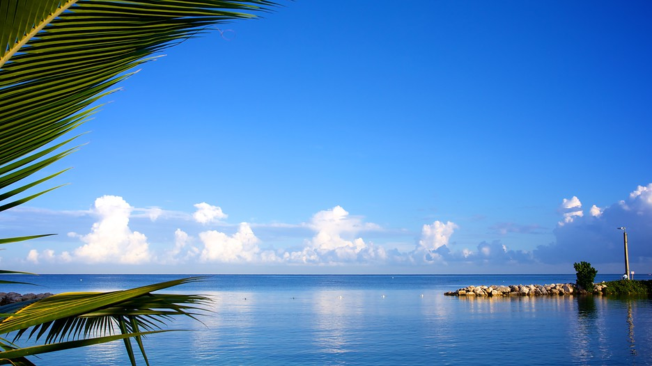 Flight And Hotel Packages To Montego Bay Jamaica