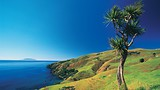 Coromandel - Tourism New Zealand/Bob McCree
