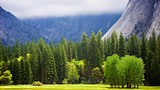 Ahwahnee Meadow - Yosemite National Park - Tourism Media