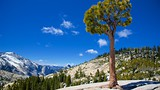 Olmsted Point - Yosemite National Park - Tourism Media