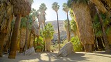 Indian Canyon - California - Tourism Media