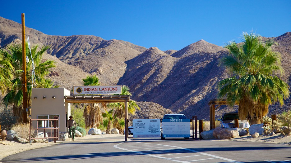 Indian canyon palm springs california attraction for Travel to palm springs