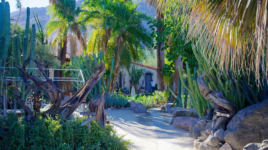 Moorten Botanical Garden And Cactarium In Palm Springs California