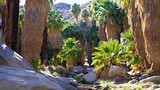Palm Springs - Tourism Media