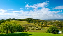Hunter Valley - Australia