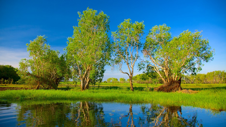 Yellow Waters, Cooinda, Kakadu National Park, Northern