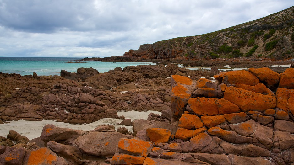 Kangaroo Island Vacations 2017 Package Amp Save Up To 603