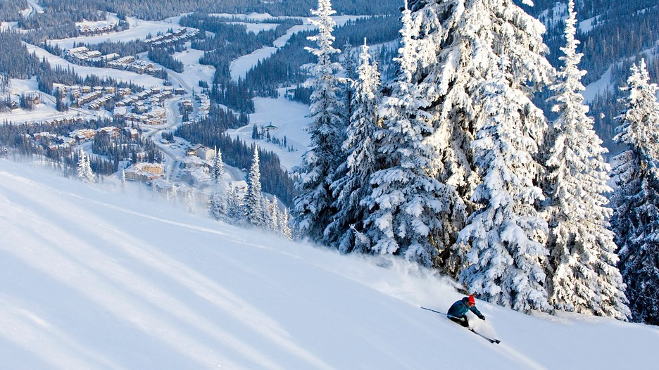 SilverStar is a mountain resort like no other. Up here, the snow is natural and abundant, and the terrain is vast. With so much to do on and off the slopes, and a welcoming colourful mid-mountain village with easy ski in/ski out access SilverStar is perfect for those .