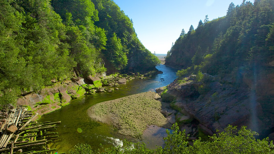 Bay Of Fundy Camping >> Fundy National Park in Alma, New Brunswick   Expedia.ca