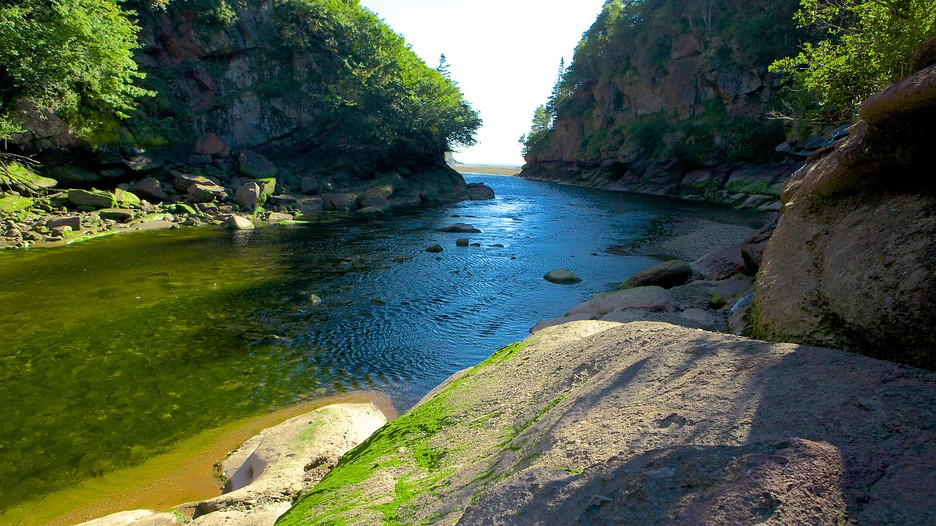 Bay Of Fundy National Park Hotels
