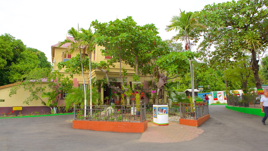 Bob Marley Museum In Kingston Expedia
