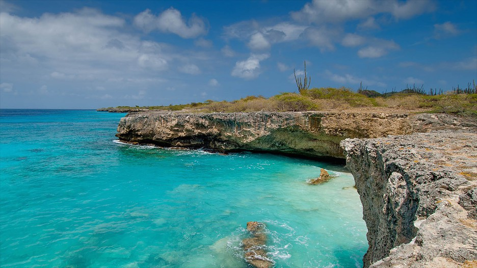 Bonaire Vacations 2017 Package Amp Save Up To 603 Expedia