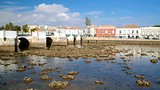 Roman Bridge - Tavira - Tourism Media