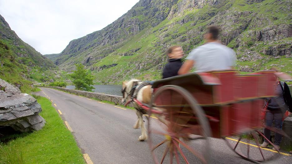 Car Rental Killarney Kerry