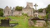 Muckross Abbey - Kerry - Tourism Media
