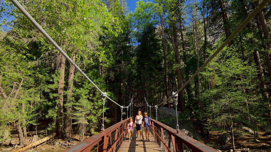Sequoia and kings canyon national parks vacations 2017 for Cheap cabin deals in sequoia