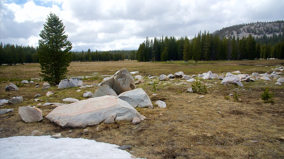 Tuolumne Meadows Yosemite National Park |expedia Com Hk