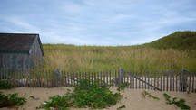 Head of the Meadow Beach - North Truro