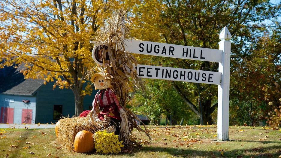 Sugar Hill Holidays Cheap Sugar Hill Holiday Packages