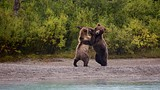 Lake Clark National Park and Preserve - Alaska - Tourism Media