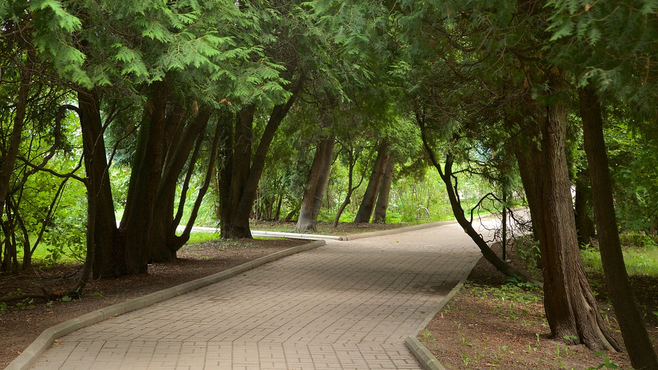 St Petersburg Botanical Garden St Petersburg