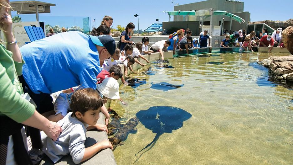 Aquarium Of The Pacific In Long Beach California Expedia