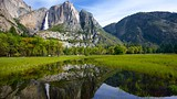 Cooks Meadow - Yosemite National Park - Tourism Media