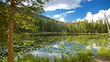 Nymph Lake - Colorado - Tourism Media