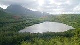 Menehune Fishpond - Lihue - Tourism Media