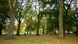 Green Park - London (og omegn) - Tourism Media