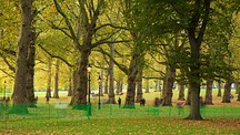 Green Park - London (med närområde)