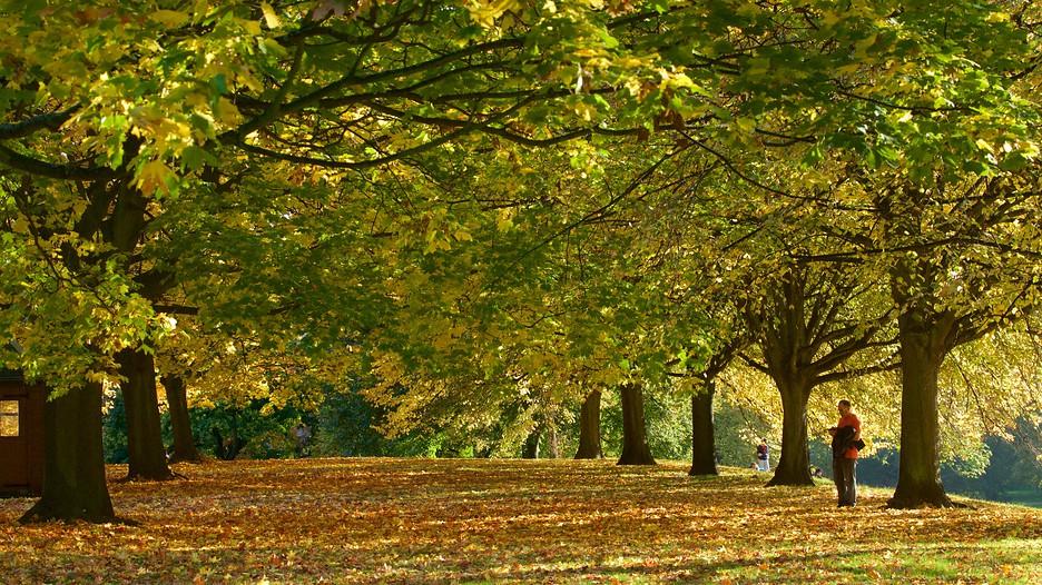 Kensington gardens punti di interesse a londra con - Londra punti d interesse ...