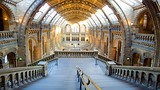 Museo de Historia Natural de Londres - Londres (y alrededores) - Tourism Media