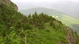 Grandfather Mountain - Carolina del Norte - Tourism Media