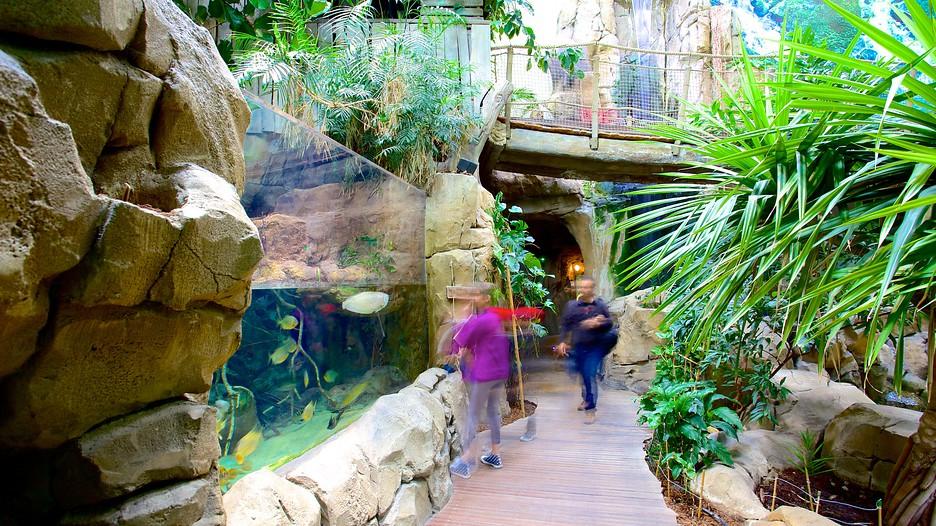 Aquarium Mare Nostrum - Montpellier (et environs) - Tourism Media