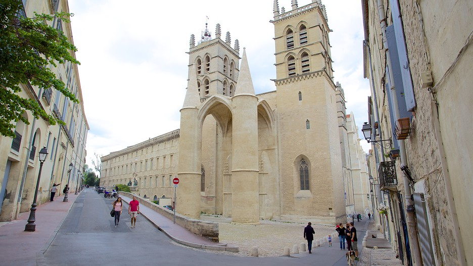 montpellier cathedral in montpellier occitanie. Black Bedroom Furniture Sets. Home Design Ideas
