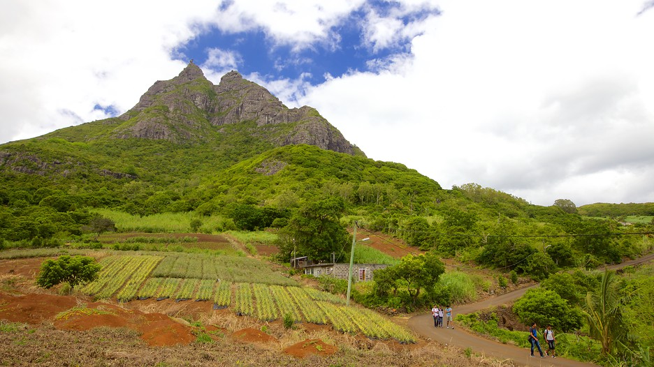 Pieter both mountain in port louis expedia - Flights to port louis mauritius ...