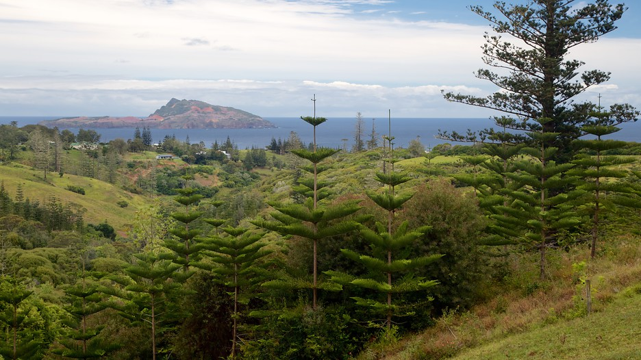 My Flight To Norfolk Island